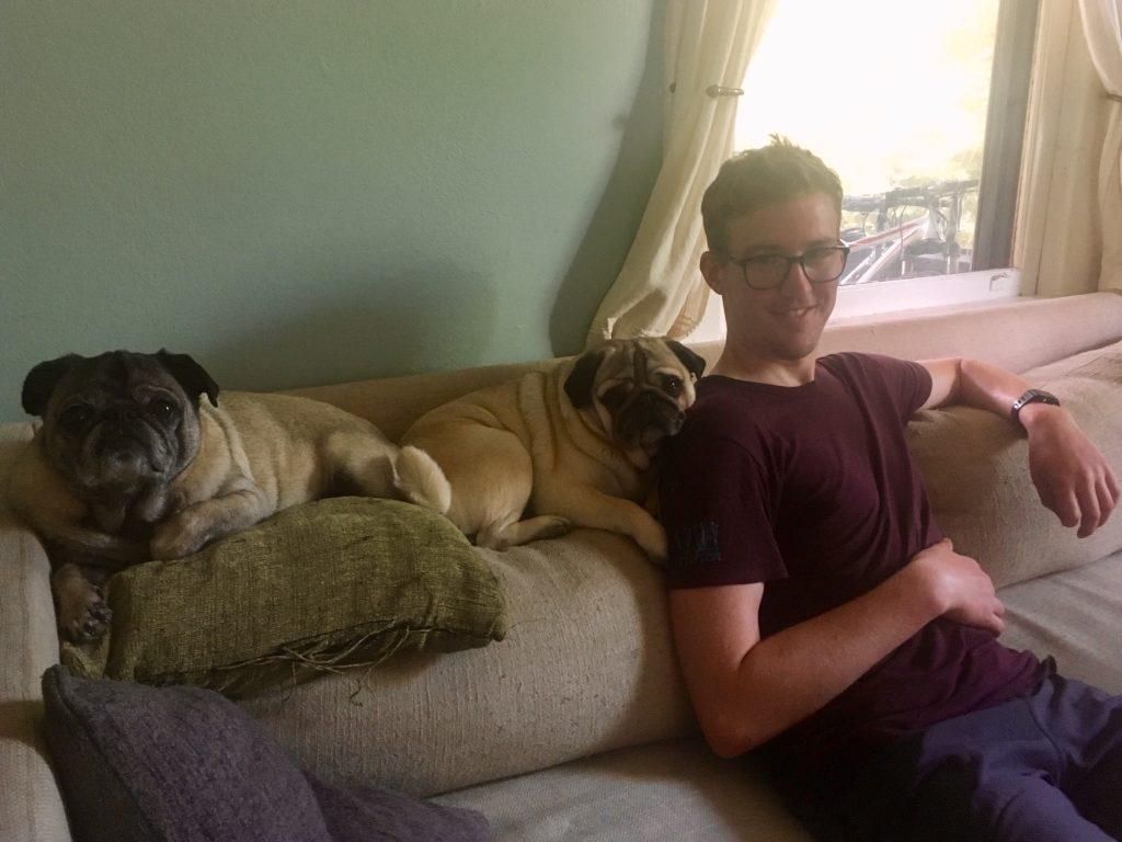 The pugs - Nigel and Tobin